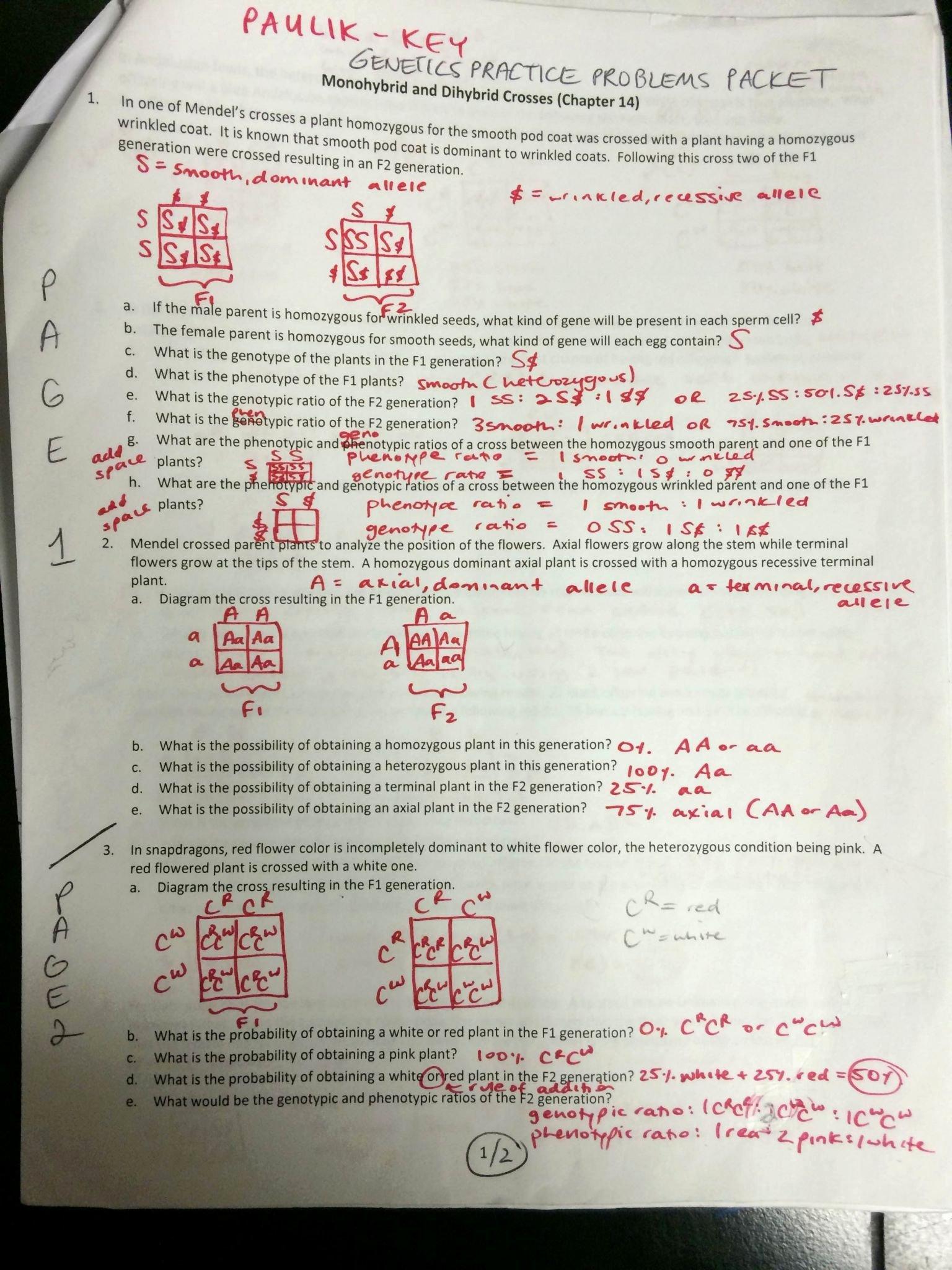50 Genetics Problems Worksheet Answers
