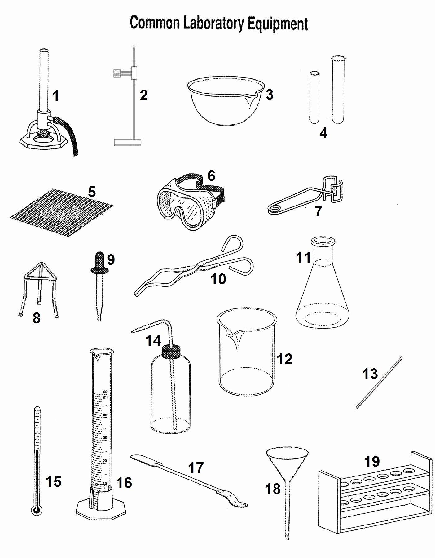 50 Lab Safety Symbols Worksheet