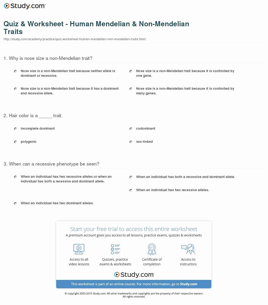 50 Mendelian Genetics Worksheet Answers
