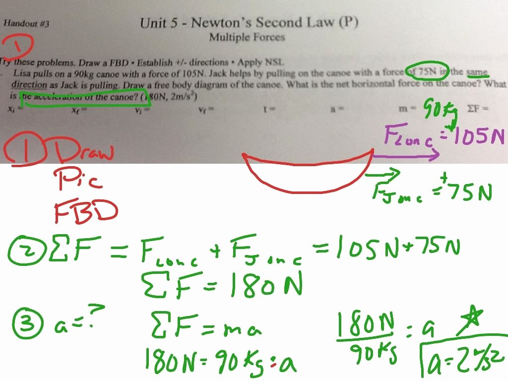 50 Newton S Laws Review Worksheet Answers