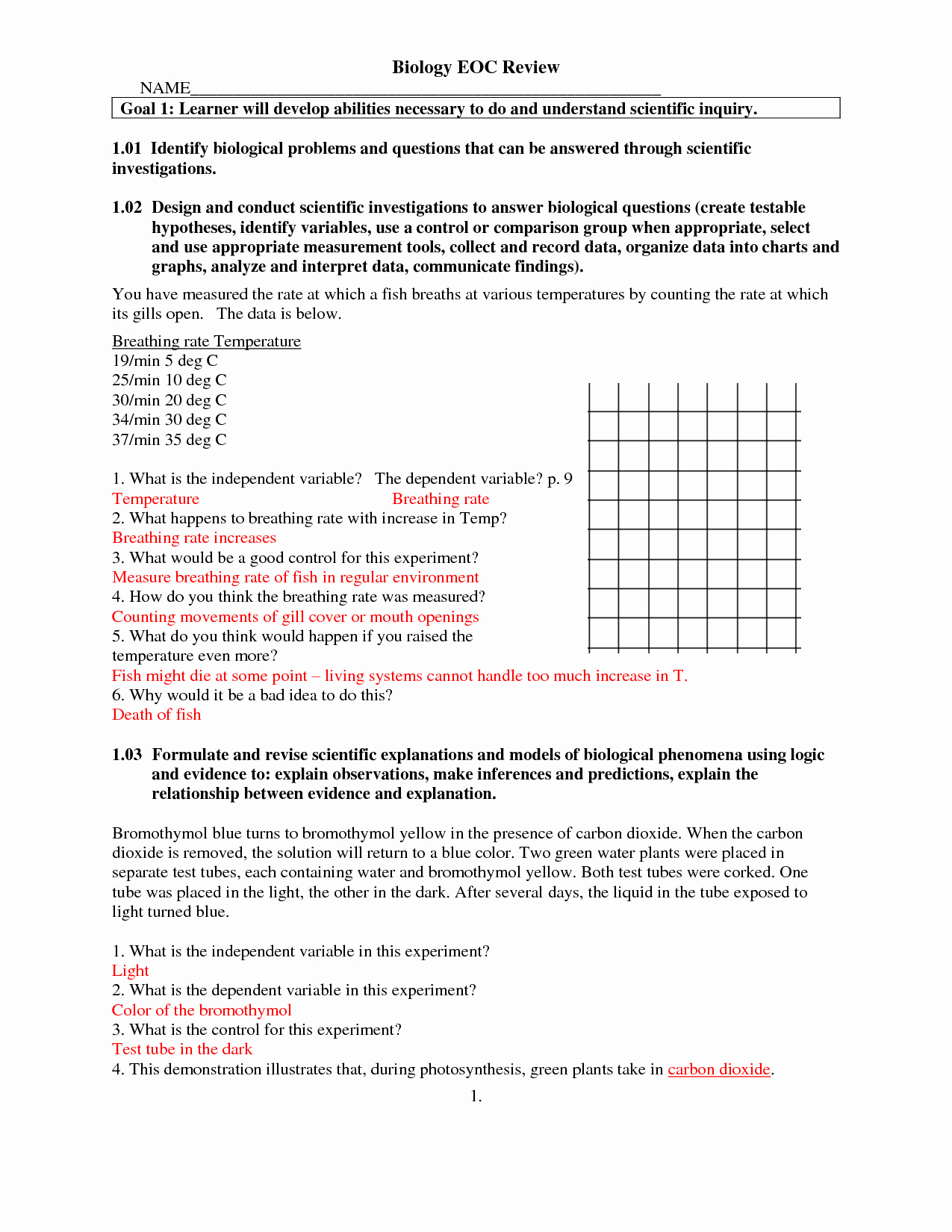 50 Protein Synthesis Worksheet Answer Key