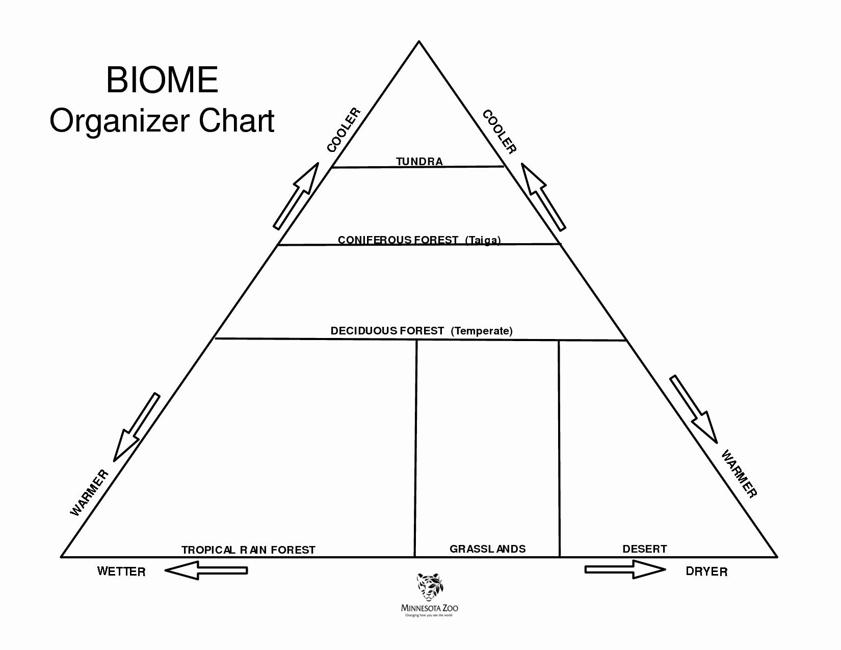 50 World Biome Map Coloring Worksheet