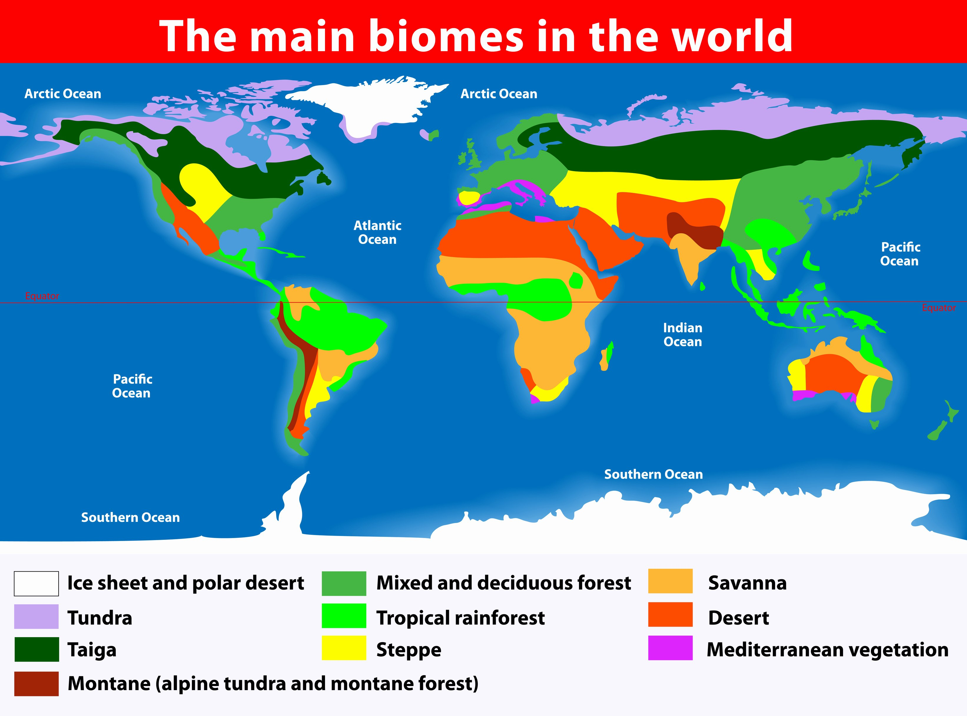 50 World Biome Map Coloring Worksheet