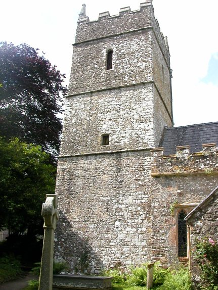 Church tower & Turkey oak