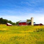 Amazing Acres Farm