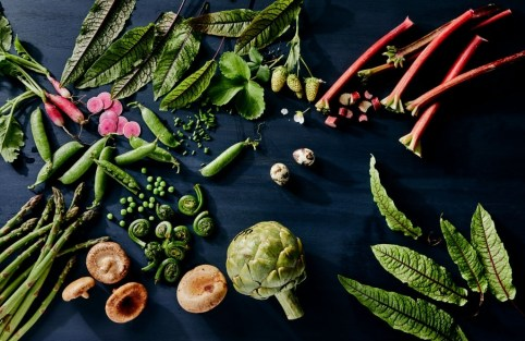 Benefits of Plant-based Diets