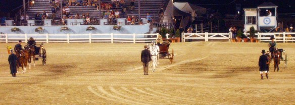 Devon Horse Show in years past.