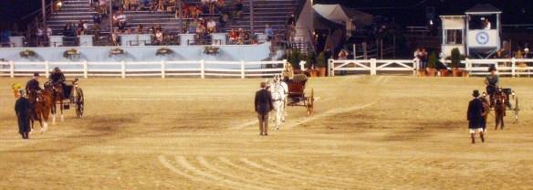 Devon Horse Show in years past.