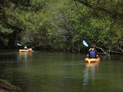 Kayaking On A Beautiful Day