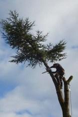 14-Last branch