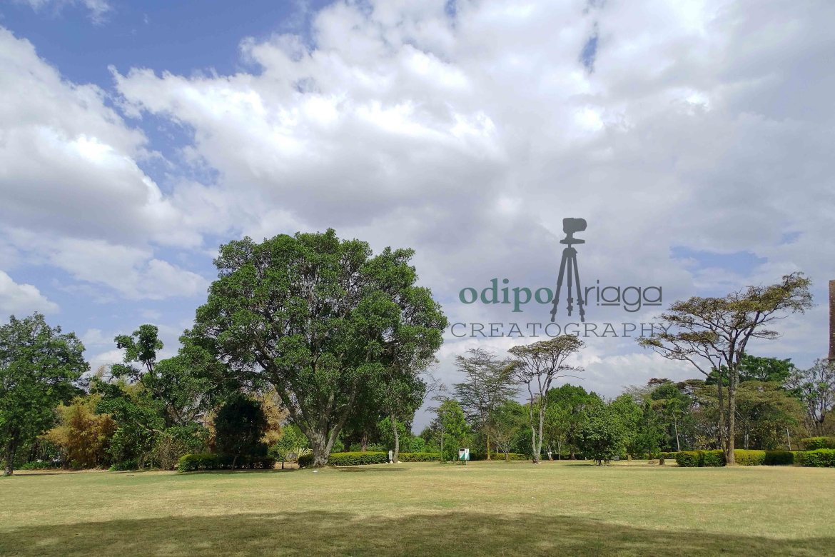 Photography Locations in Kenya