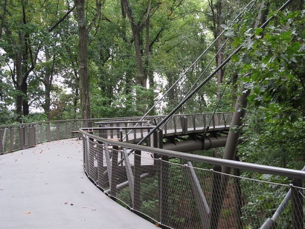 Wisconsin Road Trips to Canopy Walk
