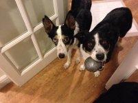 Jess & Molly