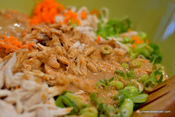 Sesame Noodles with Shredded Chicken 4 - Chew Nibble Nosh