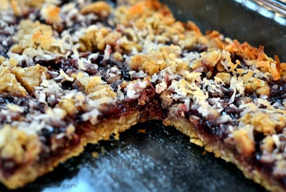 Oatmeal Coconut Raspberry Bars - Chew Nibble Nosh 5