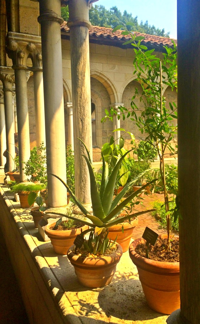 Cloisters4