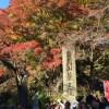 紅葉の始まった高尾山で薬膳的スイーツ