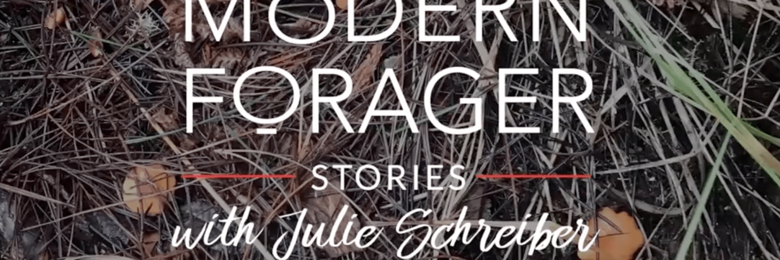 Modern Forager Podcast with Julie Schreiber, consultant winemaker & chef