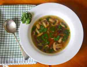 Oriental Duck Broth