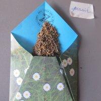 Enveloppes en DIY pour participer à la grainothèque du village