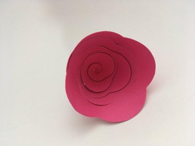 concoucours cultura pollen table fleurie (1)