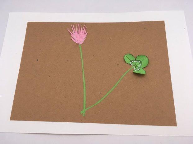 herbier en papier
