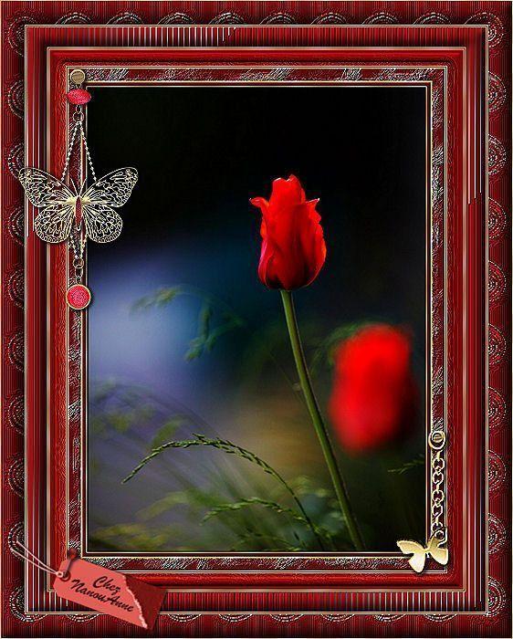 Rouge ... Joli cadrre
