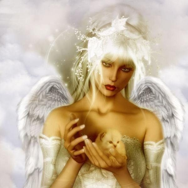 Anges ...