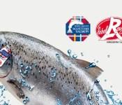 Affiche Saumon d'Ecosse Label Rouge