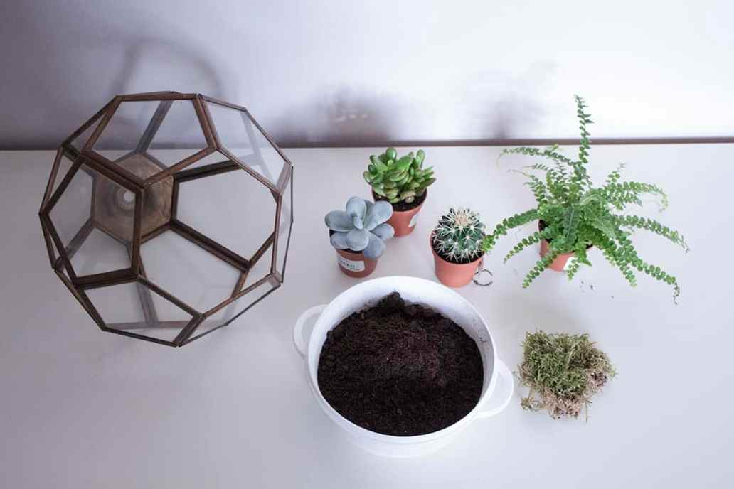 materiel pour le do it yourself terrarium - Do it yourself : composer son propre terrarium