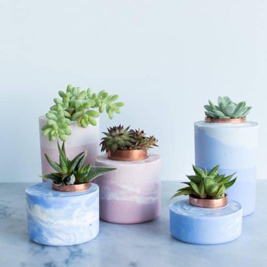 des pots a cactus pour un cadeau romantique