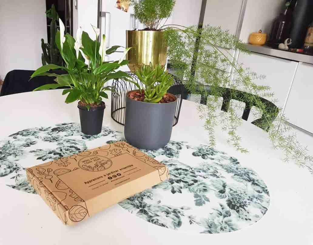 decouverte et avis box mon petit coin vert chezviviane 2048x1603 - Mon Petit Coin Vert, une box de jardinage