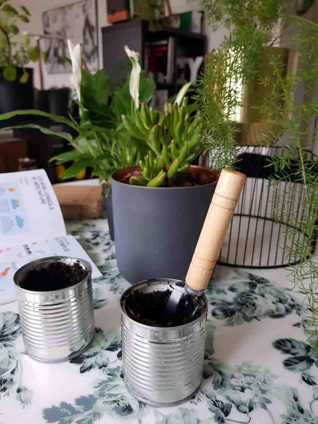 plantation graine mon petit coin vert 1536x2048 - Mon Petit Coin Vert, une box de jardinage