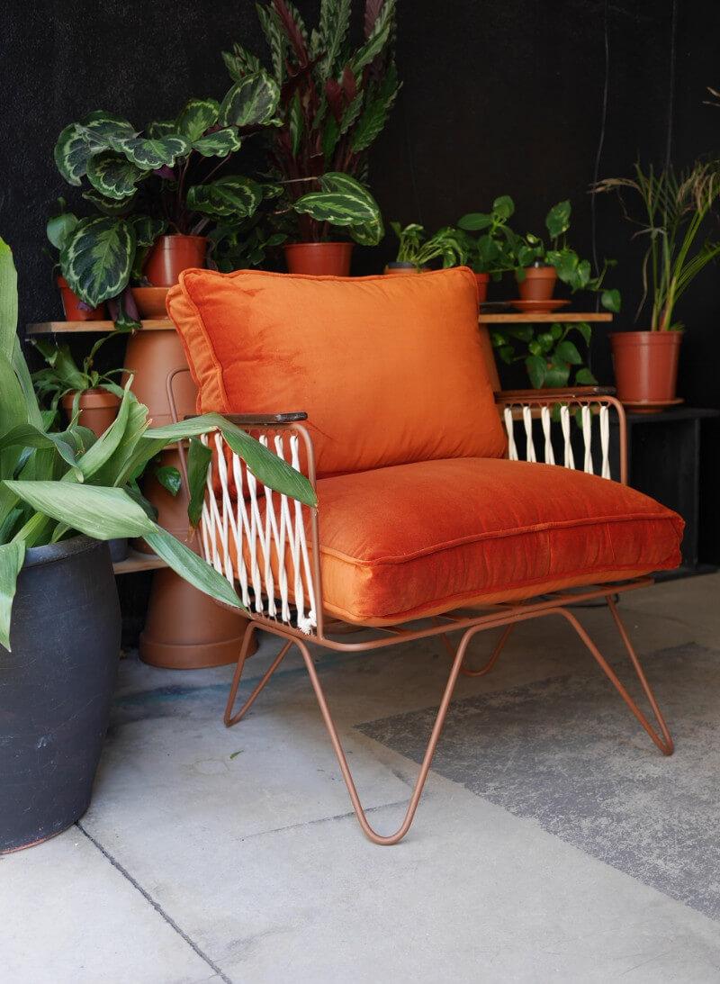 fauteuil lounge devant jungle de plantes vertes mur noir - Tendances meubles et décoration 2021 : le grand décryptage
