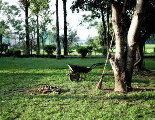 Comment aménager et préparer son jardin à l'arrivée du printemps