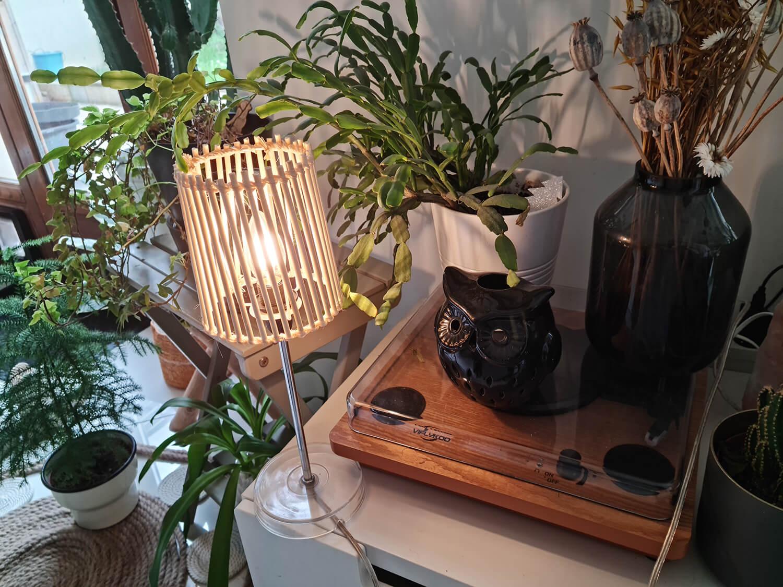 20210409 151111 - Fabriquer une lampe nature en bois pour diffuser une lumière douce