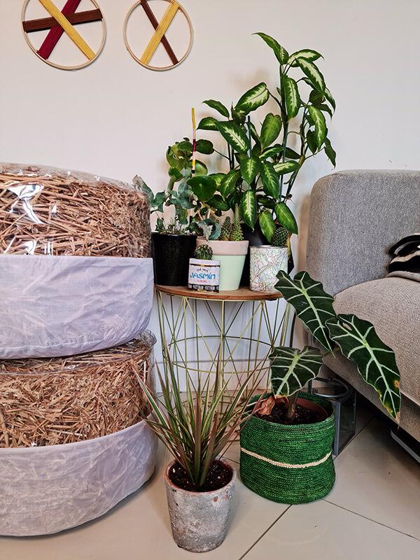 20210514 152800 - DIY jardin : Fabriquer un pouf original avec de la paille