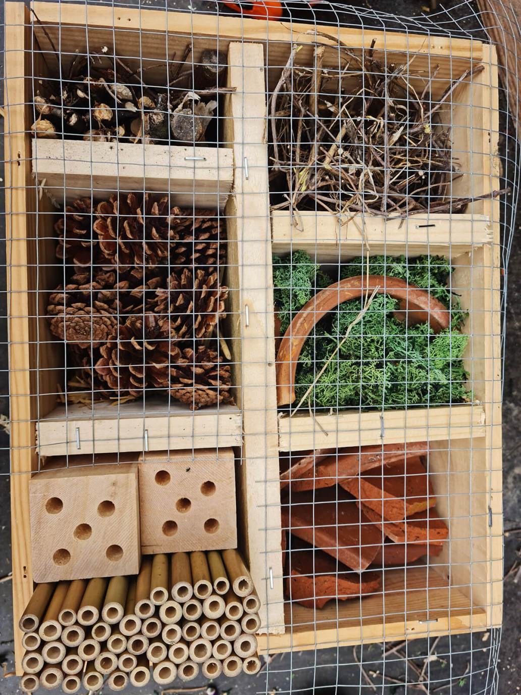 20210520 173808 - DIY jardin : construire un hôtel à insectes avec une caisse à vin