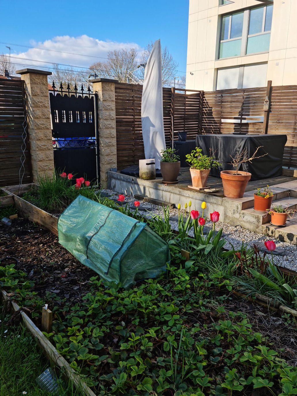 20210413 183335 - Peindre un mur en béton, la suite du relooking jardin