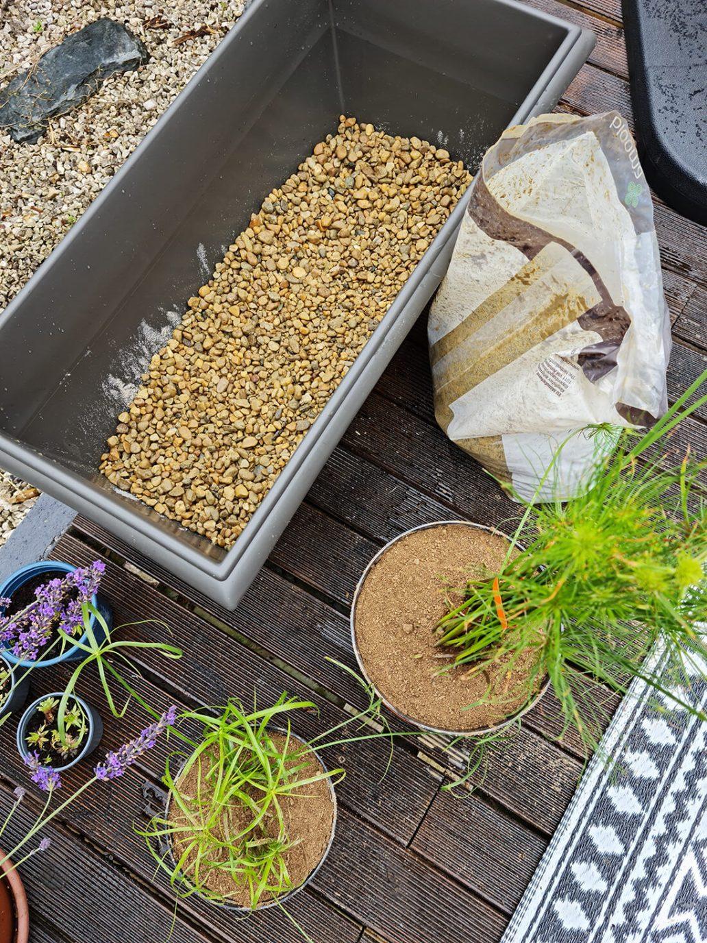 20210625 155027 - Créer un bassin apaisant avec une fontaine dans le jardin