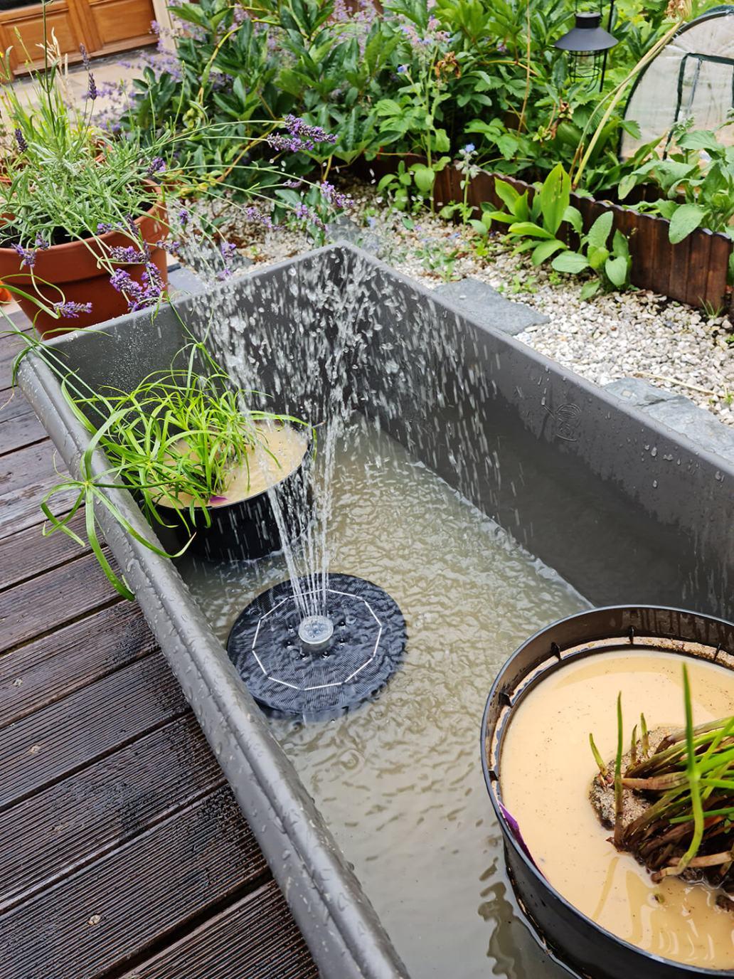 20210626 181611 - Créer un bassin apaisant avec une fontaine dans le jardin