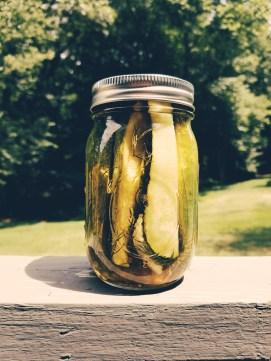Dill Pickle Jar