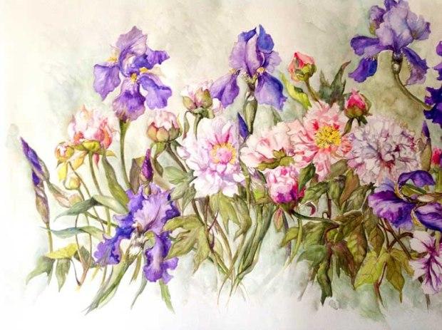 acquerello iris e peonie