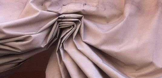 enrica caretta banner