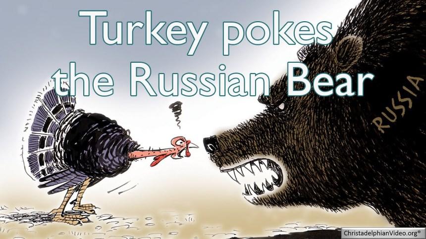 poke-the-bear