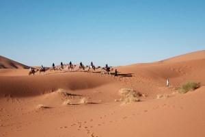 desert-1149525_640