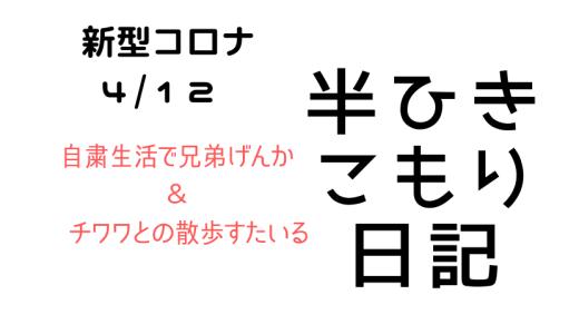 【コロナ日記】4/12 自粛生活で子供にもストレス?&チワワとの散歩スタイル