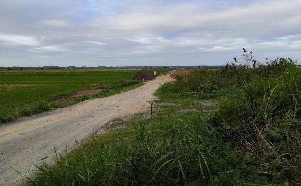 県道鎌ヶ谷本埜線関連の新しい道路、05。