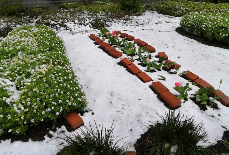 2020/03/29、千葉ニューでも雪。02