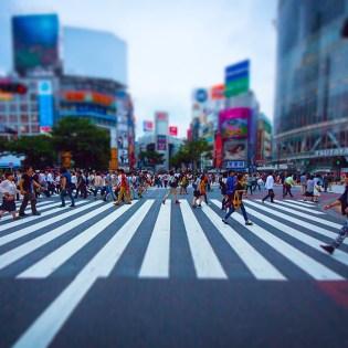 PAK93_shibuyasukuranble20130615500-thumb-1185x700-5003